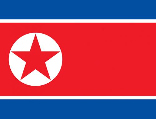 China – Appellvorschlag: China darf nordkoreanische Flüchtlinge nicht in den Tod schicken!
