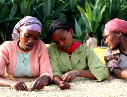 Äthiopien: Kampf gegen Genitalverstümmelung