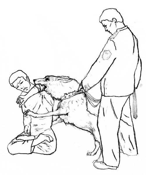 Männer frauen foltern Was man