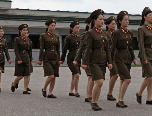 IGFM Nordkorea-Report 3-2017